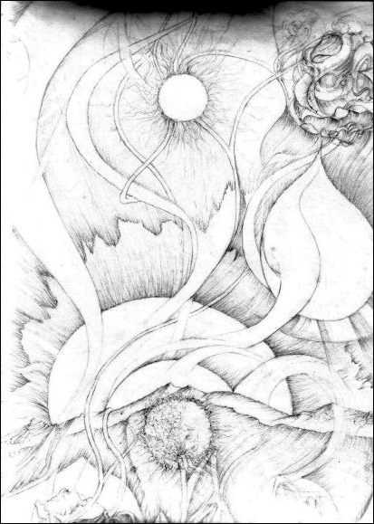sunflower-graphit-by-arkis-2002