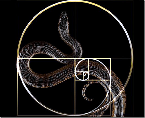 serpent-golden-schnitt-montage-by-arkis