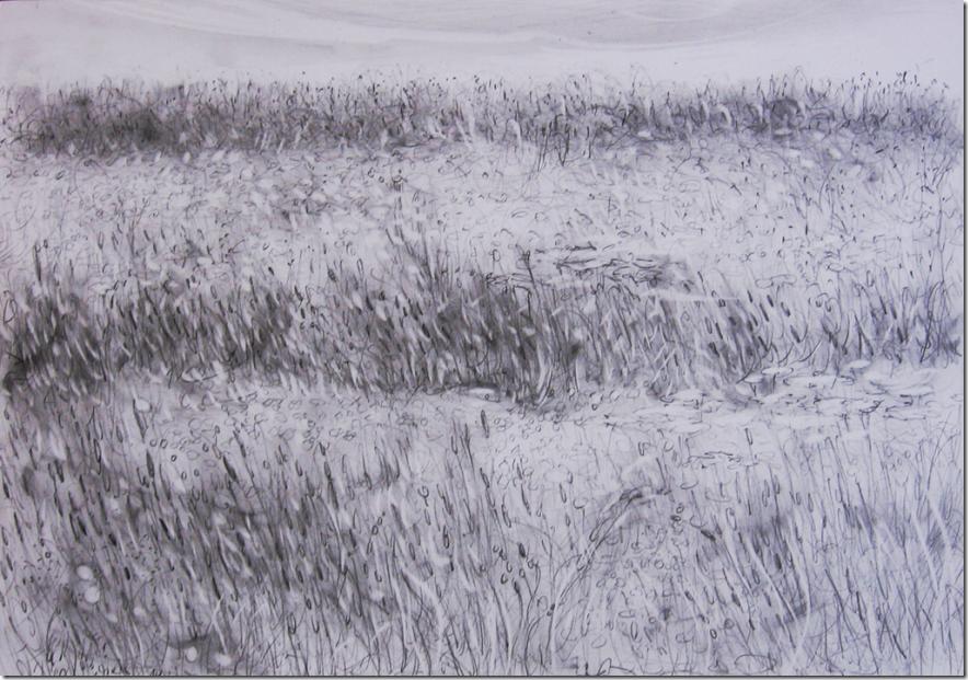 sommerfeld-graphit-drawing-by-arkis-juni-2014