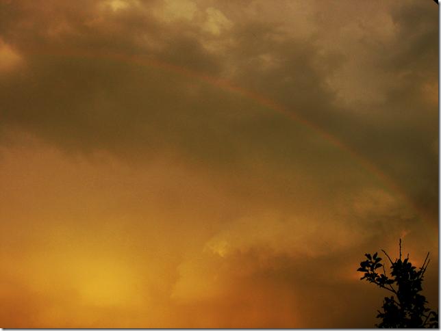 rainbow-und-gewitter-am-abend-by-arkis-juli-15