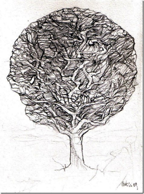 _lbaum-by-arkis