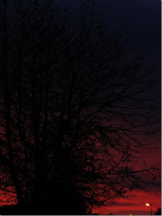 fireinthesky-by-arkis-11-19