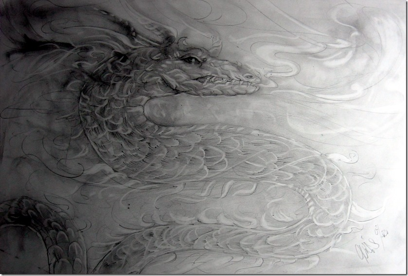 drachen-graphit-by-arkis-webv-02-20