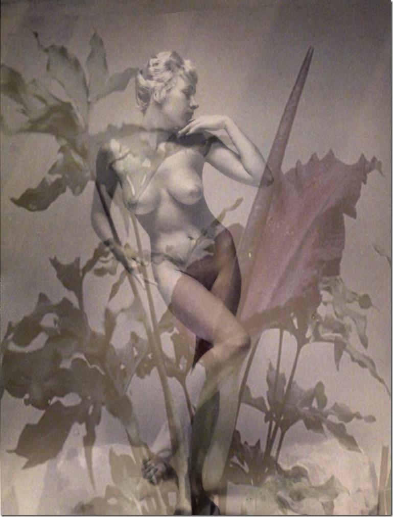nymphe-digital-art-by-arkis-06-2020