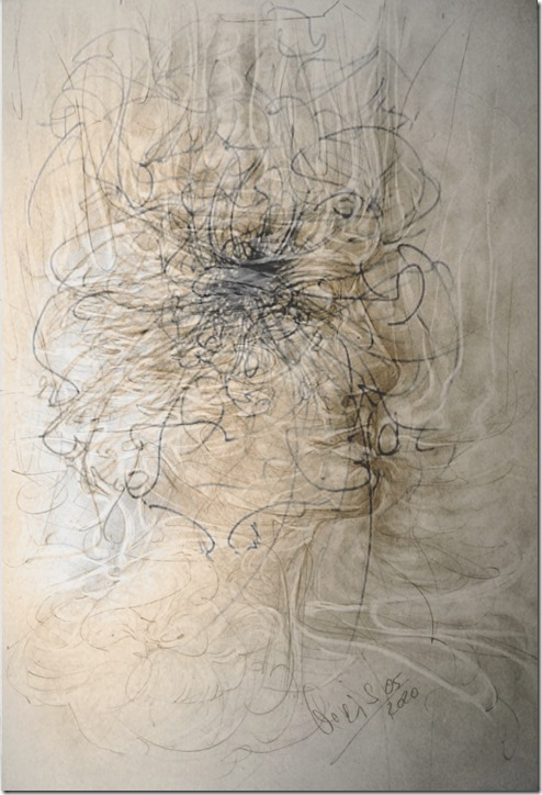 alb-des-waldes-webv-graphitdrawing-by-arkis-05-2020