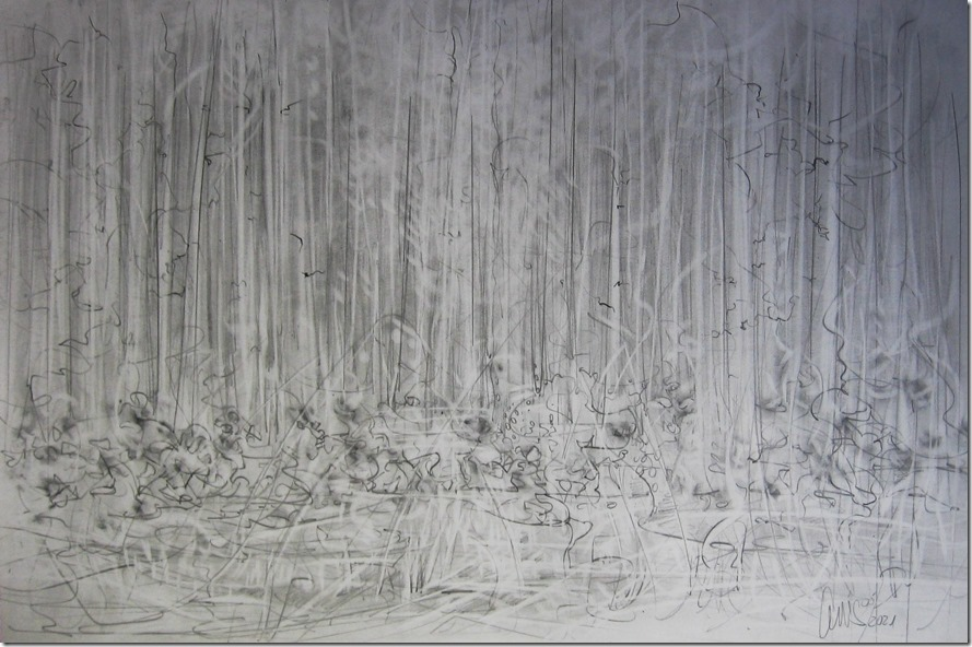 waldrand-graphitdrawing-by-arkis-05-2021-webv