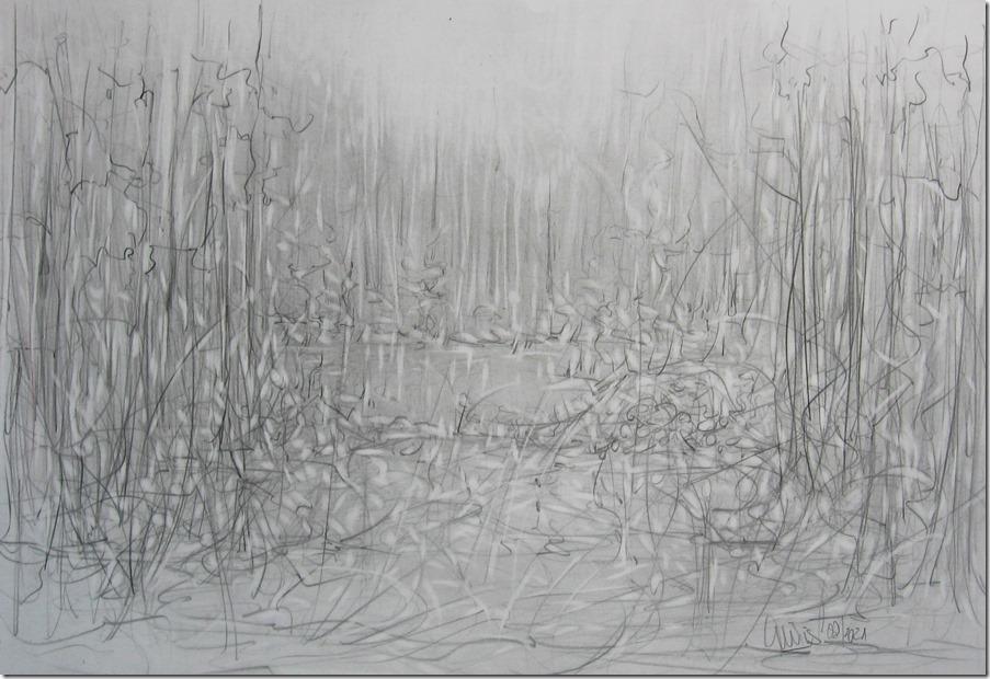 weiher-in-herbstlichem-waeldchen-webv-graphitrawing-by-arkis-08-2021